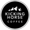 Chris Wrazej of Kicking Horse Coffee reviewing Metal Structure Concepts